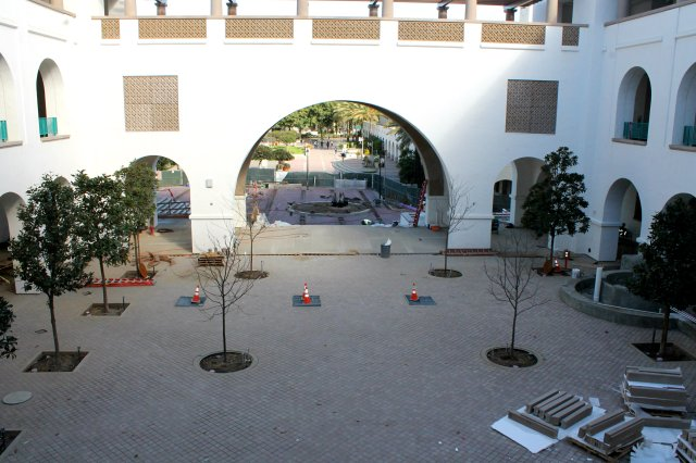 Trees are planted in Goldberg Courtyard.